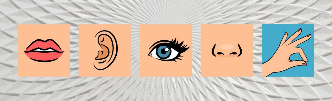 Les 5 sens du papier